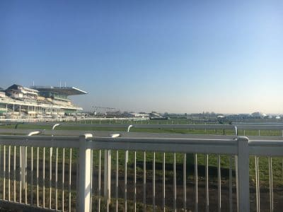 Case study: Grand National Festival (Aintree Racecourse)